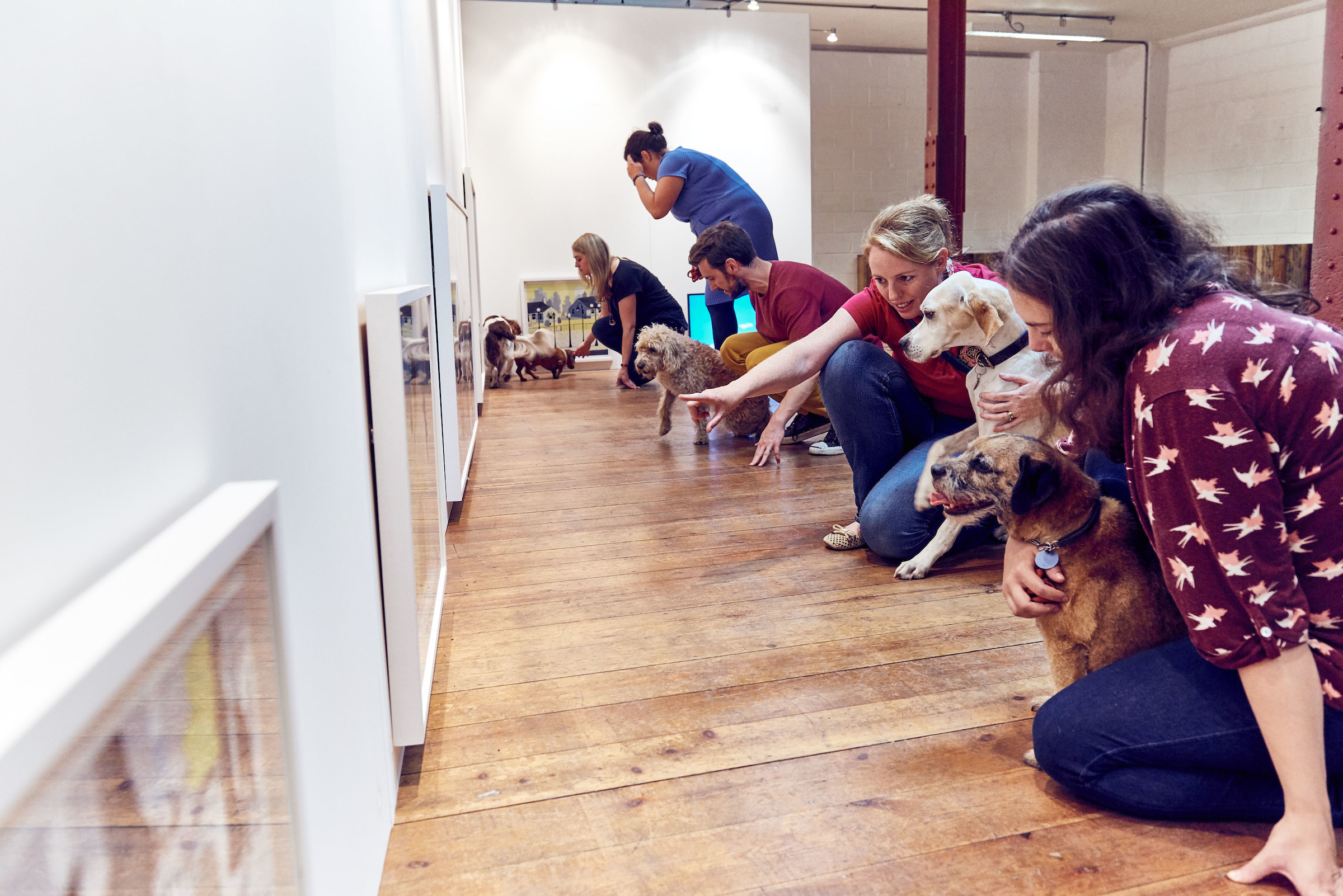BUCK_Dogs_Exhibition-22.jpg