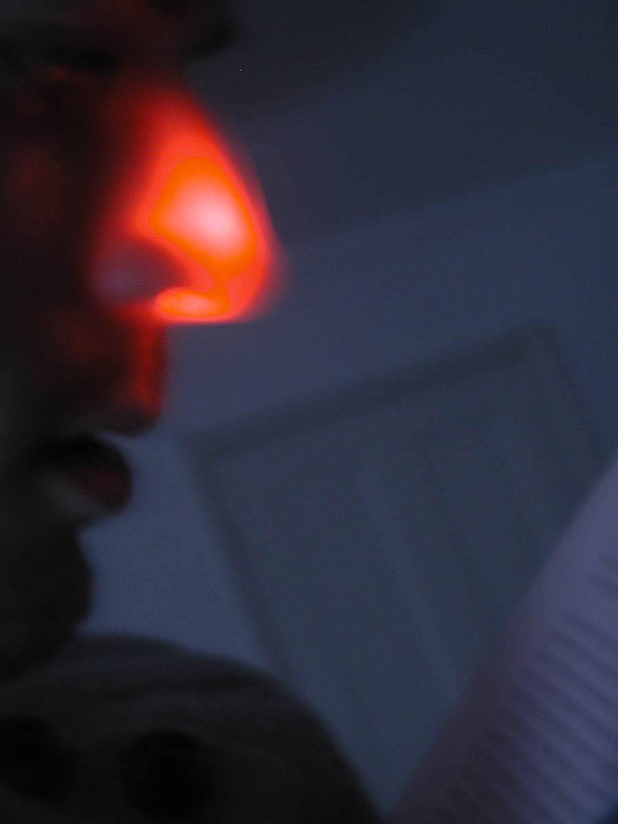 noselight.jpg
